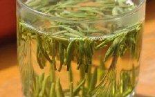 喝毛尖茶叶对身体有哪些好处会使血压升高吗?