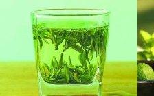 明前信阳毛尖二级茶叶